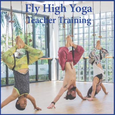 fly high yoga teacher training